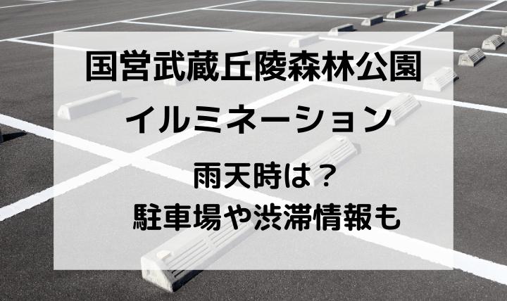 国営武蔵丘陵森林公園スターライトイルミネーション雨天時・駐車場・渋滞情報